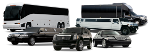 Fort Worth Chauffeur Limousine Services, Executive Airport Transfers, Corporate Travel, Events, tours, Weddings, Professional, Black Car Service, Valet Service, Sedan, SUV, Charter Bus, Shuttle, Limo